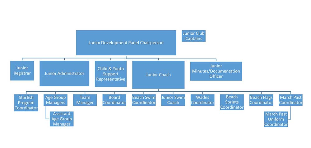 Junior Organisation Chart 2017